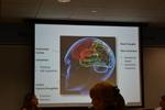 Understanding how our brains work!